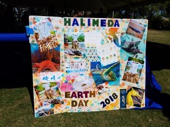 Presentation for Halimeda